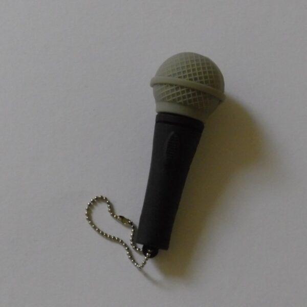 USB stick 32 Gb microfoon